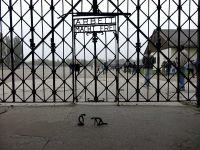 Dachau_DSC06187