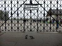 Dachau_DSC06188