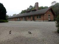 Dachau_DSC06222