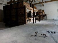 Dachau_DSC06258