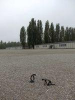 Dachau_DSC06600