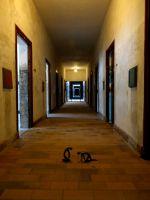 Dachau_DSC06805